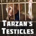 Imaginea articolului FOTO, VIDEO | 'Ouăle lui Tarzan', cel mai recent documentar al regizorului Alexandru Solomon, cronică elogioasă în The Hollywood Reporter