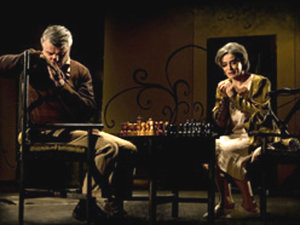 www.teatrul-evreiesc.ro)