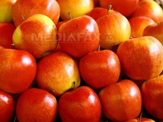 """Imaginea articolului Rusia interzice importul fructelor din Republica Moldova, din cauza unei """"insecte periculoase"""""""