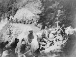 Calea ferată a morţii: Povestea drumului care a dus la moartea a peste 12.000 de prizonieri în al Doilea Război Mondial - FOTO, VIDEO
