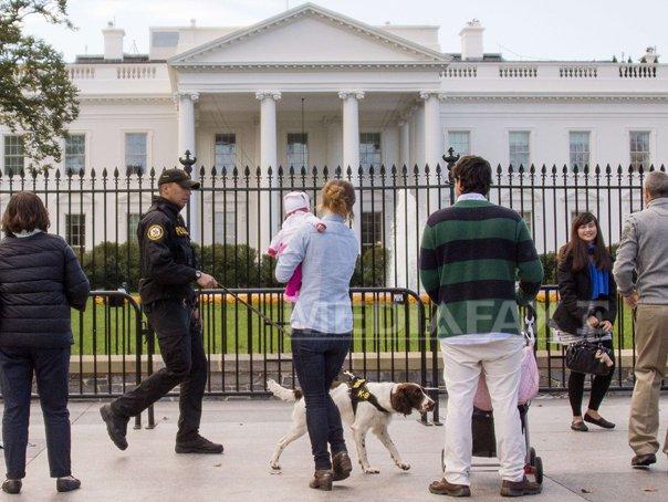 C�inii din serviciile secrete americane, vedete pentru o zi, la Casa Alba