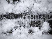 """Amintiri din AUSCHWITZ: """"Te obişnuiai cu orice. Când crematoriul nu mai făcea faţă, gărzile ardeau corpurile în şanţuri"""" - FOTO"""