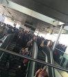 Imaginea articolului Staţie de metrou din Londra, închisă pentru scurt timp din cauza unei alerte de securitate FOTO/VIDEO