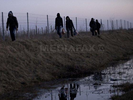 Imaginea articolului Austria a trimis 60 de militari la graniţa dintre Ungaria şi Serbia, pentru securizarea frontierei