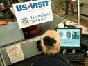 Imaginea articolului Serghei Riabkov, viceministrul rus de Externe: Decizia privind suspendarea vizelor SUA încalcă ideea de libertate
