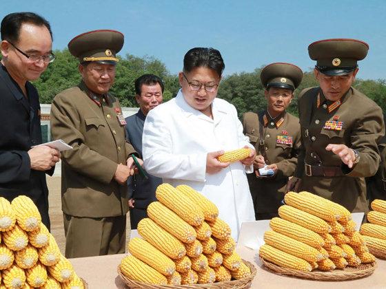 Imaginea articolului Coreea de Nord susţine că sancţiunile internaţionale ameninţă supravieţuirea copiilor ţării