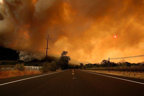 Imaginea articolului Cel puţin 21 de oameni au murit în urma incendiilor de vegetaţie din California/ Peste 500 de persoane sunt date dispărute