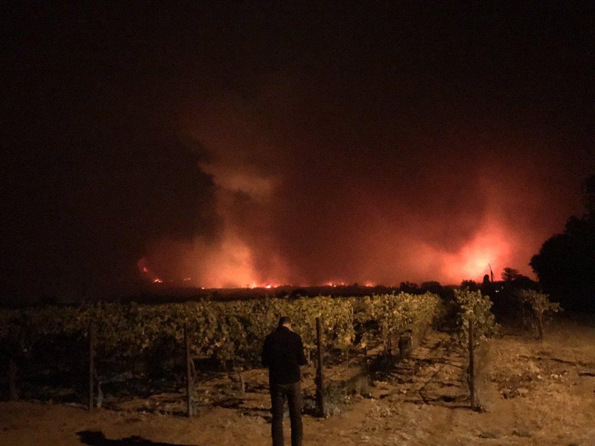 Bilanţul victimelor în urma incendiilor de vegetaţie din California a ajuns la cel puţin 31 de morţi