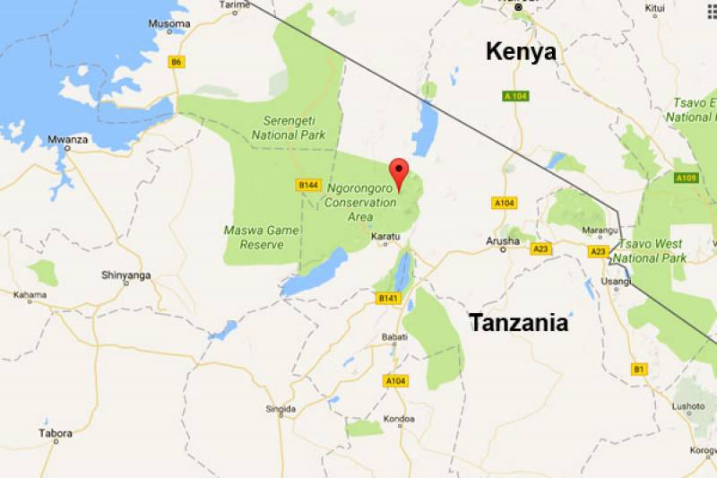 Cel puţin 11 morţi, în Tanzania, după prăbuşirea unui avion care transporta turişti