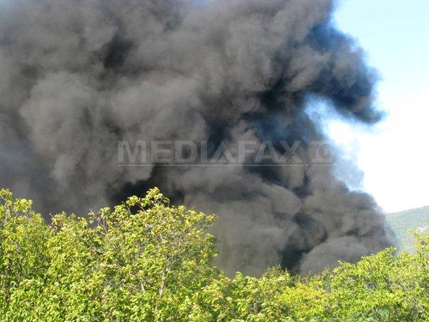 Printre victimele prăbuşirii avionului în Tanzania se află doi americani şi doi germani
