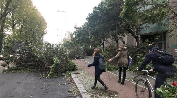 Imaginea articolului Bilanţ negru | Cel puţin zece persoane au murit în urma fenomenelor meteo extreme din Belgia, Olanda, Germania şi Italia