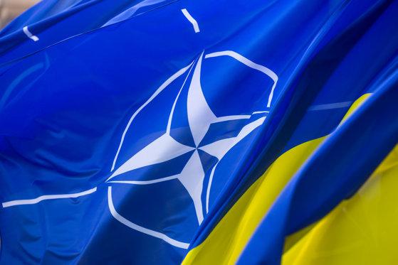 Imaginea articolului NATO a oferit Ucrainei statut de ţară aspirantă pentru aderare