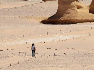 Ostaticii răpiţi în Egipt au fost eliberaţi