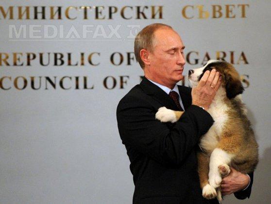 Imaginea articolului Putin a primit cadou un căţel ciobănesc bulgar de la premierul Boiko Borisov