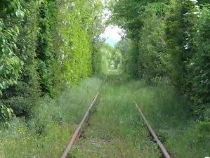 COMOARA ASCUNSĂ din România. Este recunoscută pe plan mondial  - VIDEO