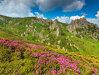 Imaginea articolului România, în TOPUL celor mai atractive destinaţii de vacanţă pentru 2015