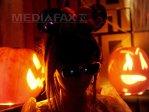 Imaginea articolului HALLOWEEN 2014: Teatru, muzică, filme, dar şi strigoi, vrăjitoare şi fantome, în Bucureşti