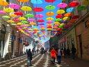 Imaginea articolului GALERIE FOTO 700 de umbrele colorate acoperă o stradă din Timişoara. Cele mai frumoase fotografii sunt premiate