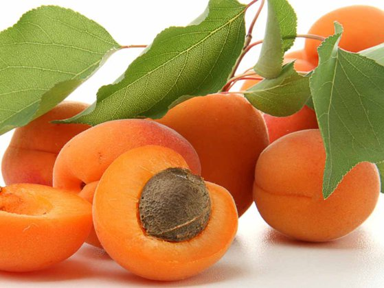 Imaginea articolului Beneficiile consumului de caise. Fructele care sunt o fântână a tinereţii şi sănătăţii