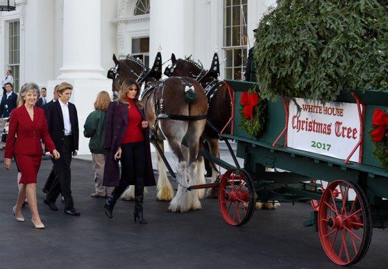Imaginea articolului Prima Doamnă a SUA, Melania Trump, a primit pentru prima oară, la Casa Albă, bradul de Crăciun | FOTO, VIDEO