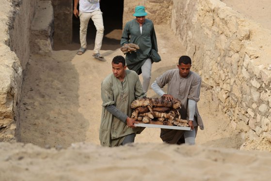 Image of the article Great discovery of graves containing more mummies, including a unique scarab - Authentic PHOTO