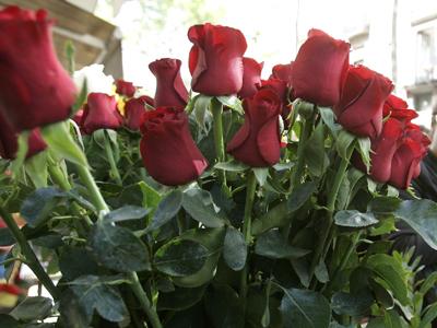 56. Gönülçelen -Inima furata - Heart Stealer - General Discussions - Comentarii - Pagina 4 Trandafiri-2