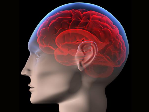 vedere la afectarea creierului vizualizare plus 10