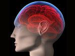 Imaginea articolului STUDIU: O simplă infecţie poate afecta coeficientul de inteligenţă pentru câţiva ani
