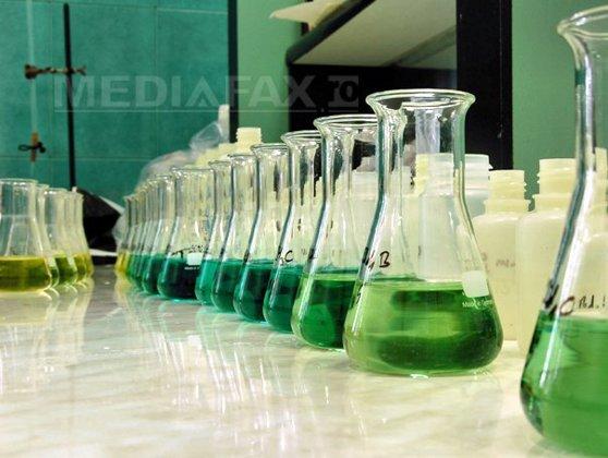 Imaginea articolului Chimiştii americani au realizat un experiment ce i-a dus mai aproape de combustibilul perfect