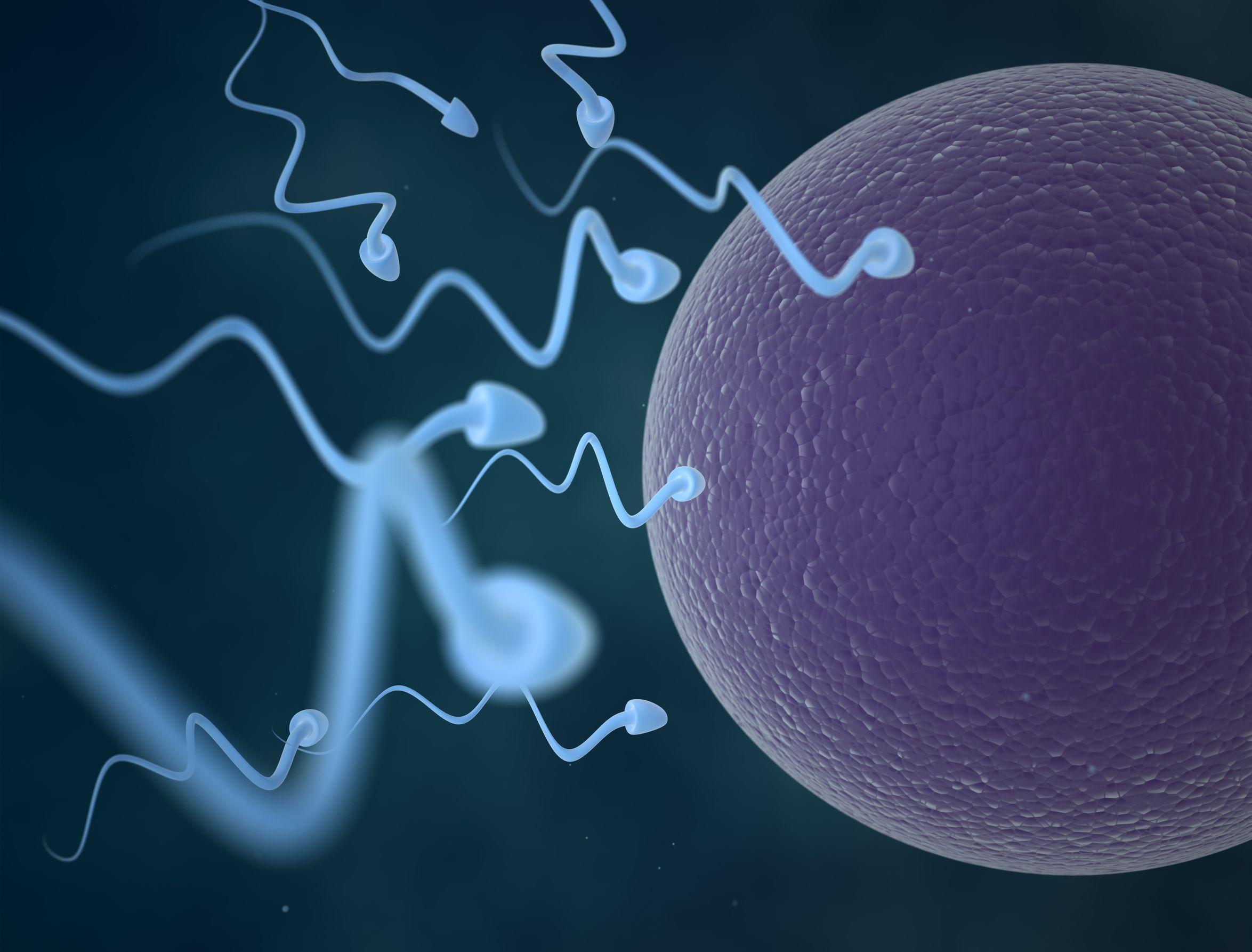 Motivul incredibil pentru care femeile cu studii superioare aleg sa isi inghete ovulele. Ce rol joaca generatia