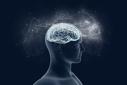 Imaginea articolului Modul în care funcţionează memoria. Motivele pentru care uităm unele lucruri, dar ne amintim altele