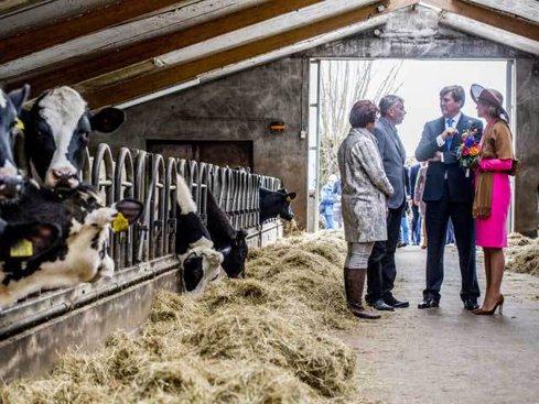 În Olanda, agricultura este la superlativ. Ingredientele succesului: educaţie agricolă, investiţii în cercetare, tehnologie de vârf şi cel mai mare port al Europei