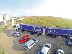 """Românul care a reuşit să spargă """"careul de aşi"""" al străinilor din cereale ajunge la 1,6 mld. lei"""