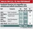 Grafic: Rezultatele financiare ale companiilor care administrează mallurile Immofinanz în 2016