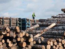 Turcii de la Kastamonu vor afaceri de 120 mil. € la Reghin în 2013
