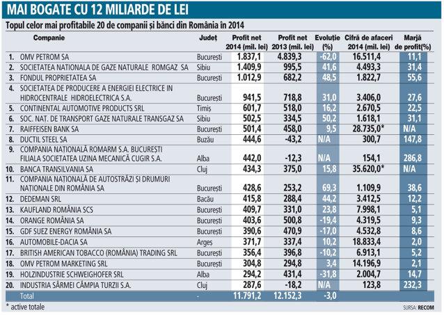 """Campionii economiei: 20 de companii sunt """"responsabile"""" pentru aproape 20% din profitul total din businessul românesc"""