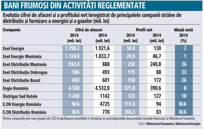 Evoluţia cifrei de afaceri şi a profitului net înregistrat de principalele companii străine de distribuţie şi furnizare a energiei şi a gazelor (mil. lei)