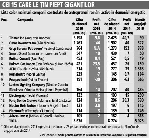 Lista celor mai mari companii controlate de antreprenori români active în domeniul energetic