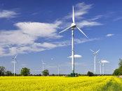 În curând în Danemarca energia regenerabilă  nu va mai avea nevoie de subvenţii  primite de la stat