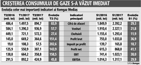 Grafic: Evoluţia celor mai importanţi indicatori ai Romgaz Mediaş (S1 2016/S1 2017)