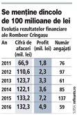 Grafic: Evoluţia rezultatelor financiare ale Rombeer Crîngaşu (2011-2016)