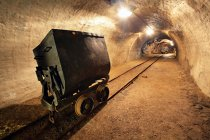 Ministerul Energiei alocă 28 mil. lei pentru exploatarea a 16,5 mil. tone de lignit din Gorj