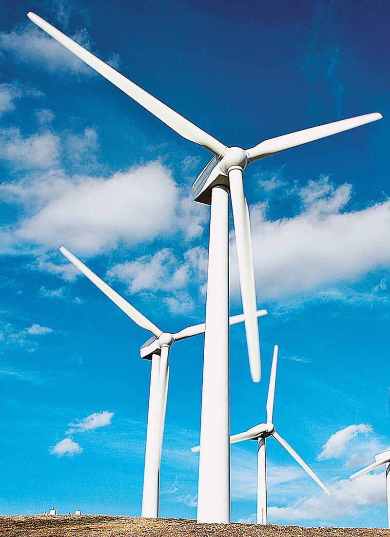 Compania de energie Tauron din Polonia se pregăteşte să cumpere masiv ferme eoliene