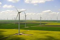 Gigantul spaniol Iberdrola avertizează cu privire la prăbuşirea unor companii din sectorul regenerabilelor