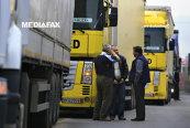 Trei antreprenori vor să schimbe piaţa serviciilor de transport printr-o platformă online