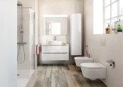 Stiglitz: Inventarea toaletei, mai importantă decât Facebook