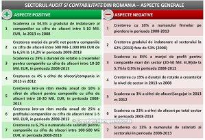Profitul firmelor de audit şi contabilitate a crescut cu 15,5% în 2013 faţă de anul anterior