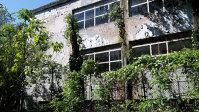 Degradarea fostului simbol al industriei optice. Clădirile fabricii IOR, în care se produceau binocluri, lunete sau lasere, sunt dărăpănate, cu geamuri sparte şi pereţi scorojiţi