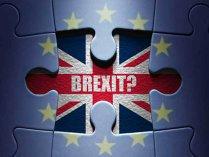 Avertisment: Firmele germane trebuie să se pregătească pentru un Brexit foarte dur