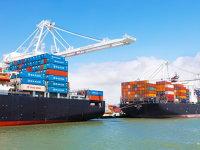 Exporturile zonei euro cresc în pofida aprecierii euro